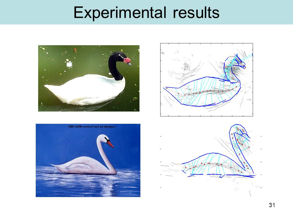 31 Experimental results