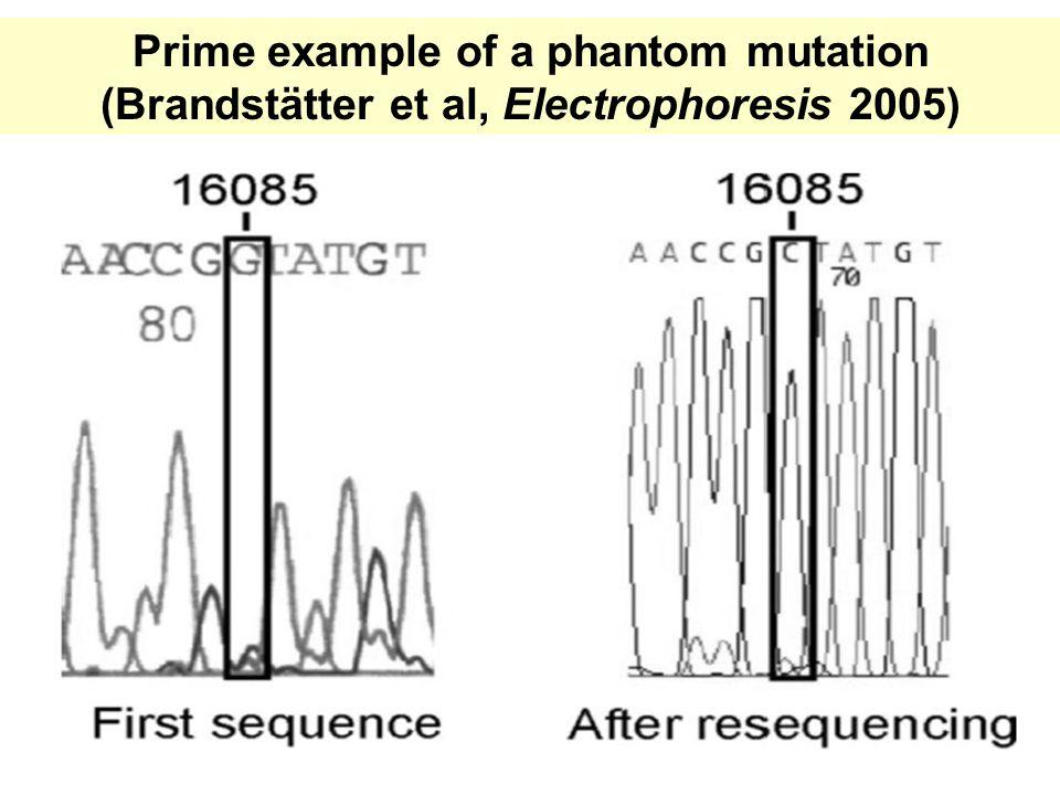 Prime example of a phantom mutation (Brandstätter et al, Electrophoresis 2005)