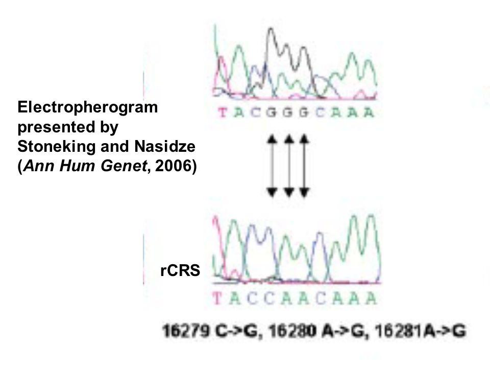 Electropherogram presented by Stoneking and Nasidze (Ann Hum Genet, 2006) rCRS