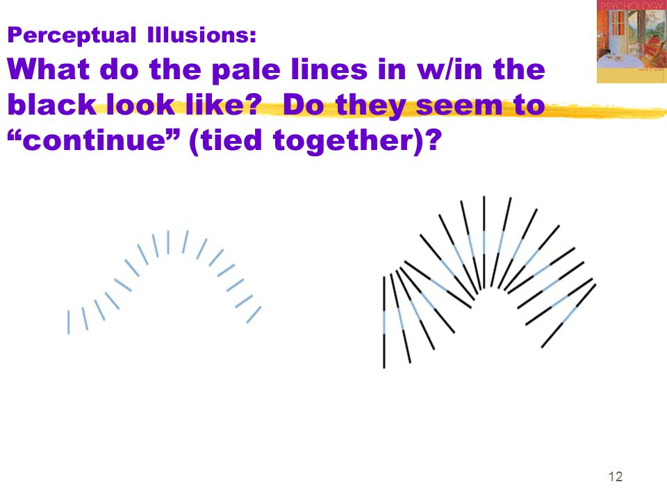 "12 Perceptual Illusions: What do the pale lines in w/in the black look like? Do they seem to ""continue"" (tied together)?"