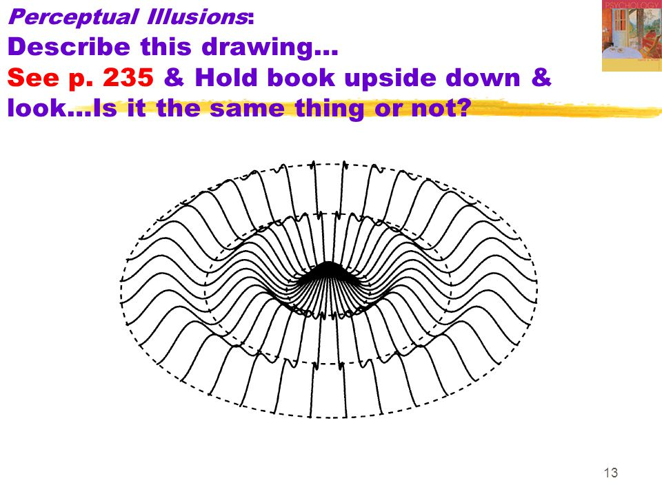 13 Perceptual Illusions: Describe this drawing… See p. 235 & Hold book upside down & look…Is it the same thing or not?