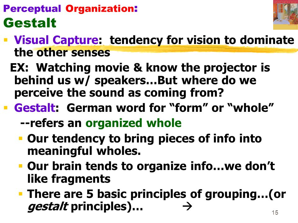 15 Perceptual Organization : Gestalt  Visual Capture: tendency for vision to dominate the other senses EX: Watching movie & know the projector is behind us w/ speakers…But where do we perceive the sound as coming from.