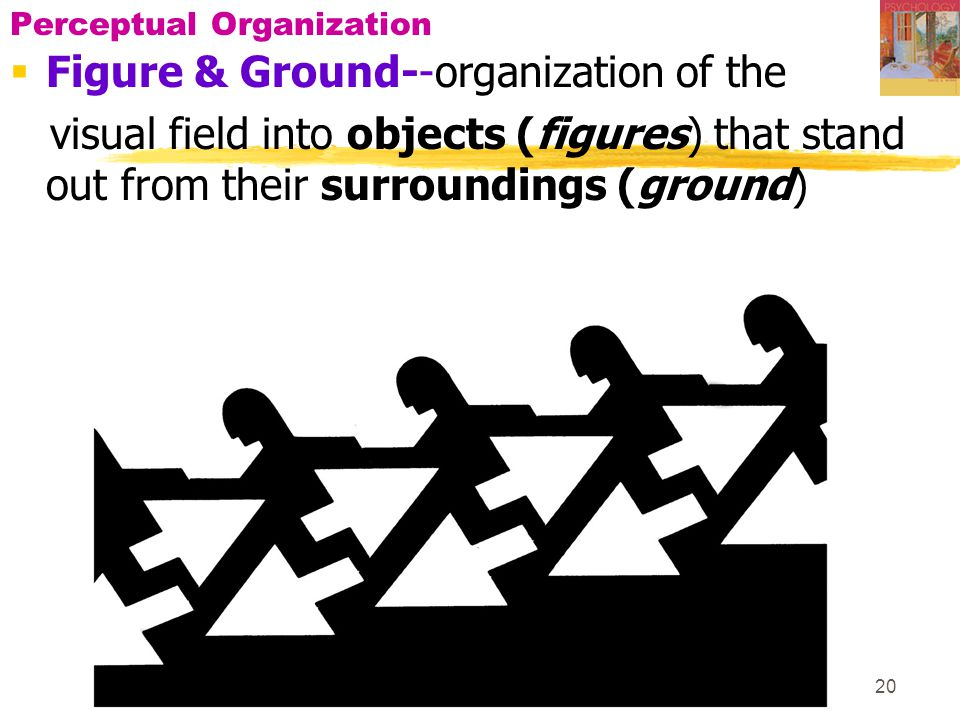 20 Perceptual Organization  Figure & Ground--organization of the visual field into objects (figures) that stand out from their surroundings (ground)