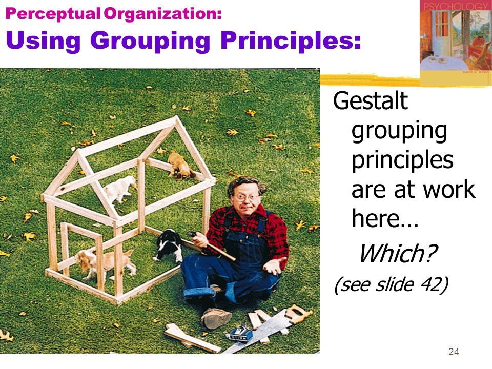 24 PerceptualOrganization: Using Grouping Principles: Gestalt grouping principles are at work here… Which? (see slide 42)