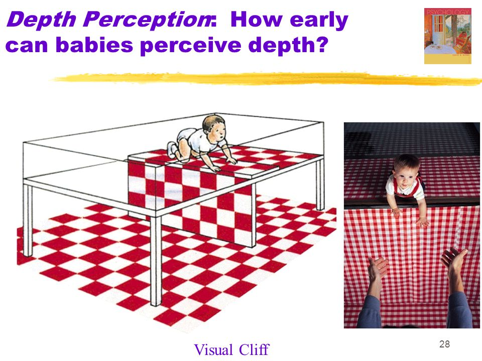 28 Depth Perception: How early can babies perceive depth Visual Cliff