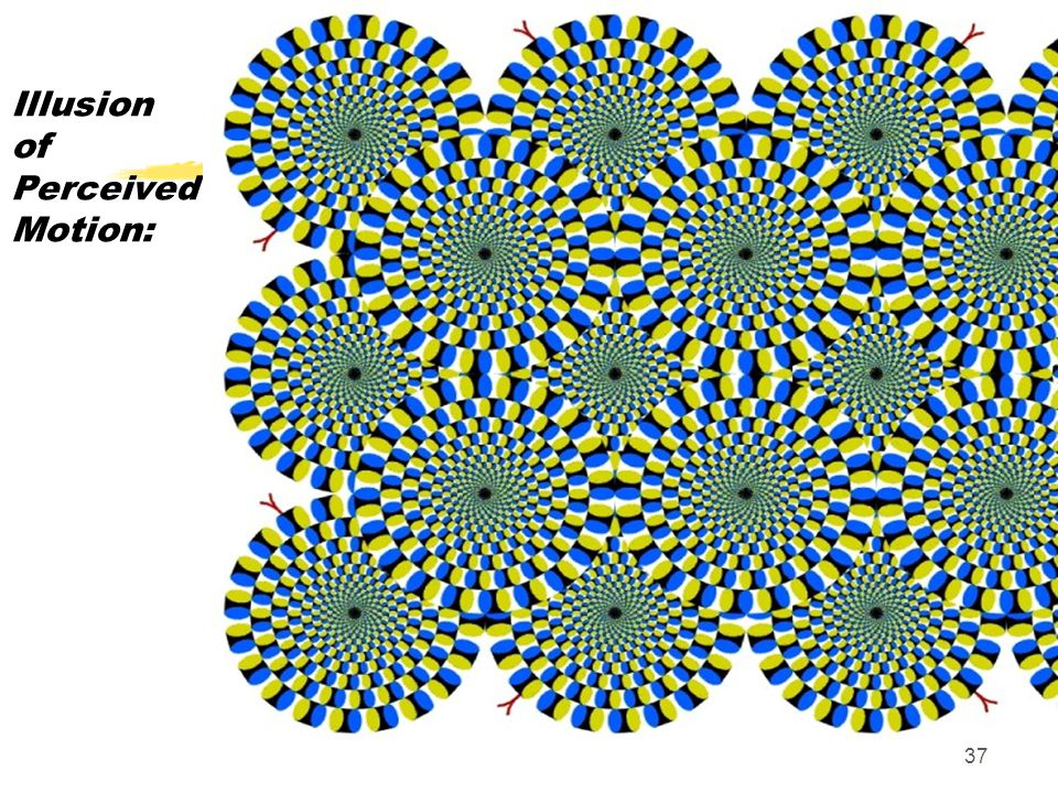 37 Illusion of Perceived Motion: