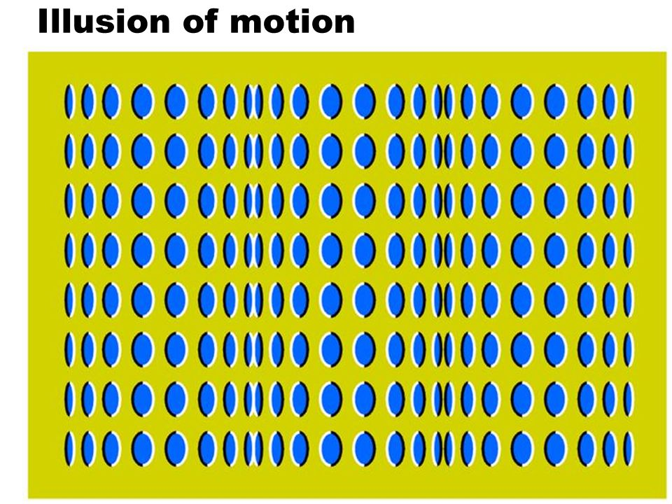 39 Illusion of motion
