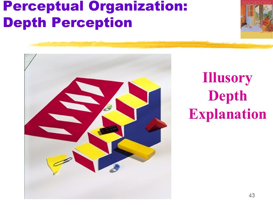 43 Perceptual Organization: Depth Perception Illusory Depth Explanation
