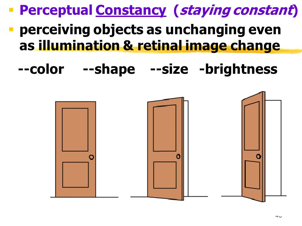 48  Perceptual Constancy (staying constant)  perceiving objects as unchanging even as illumination & retinal image change --color --shape --size -br