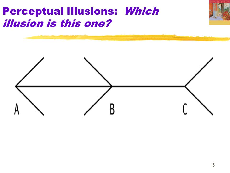 5 Perceptual Illusions: Which illusion is this one?