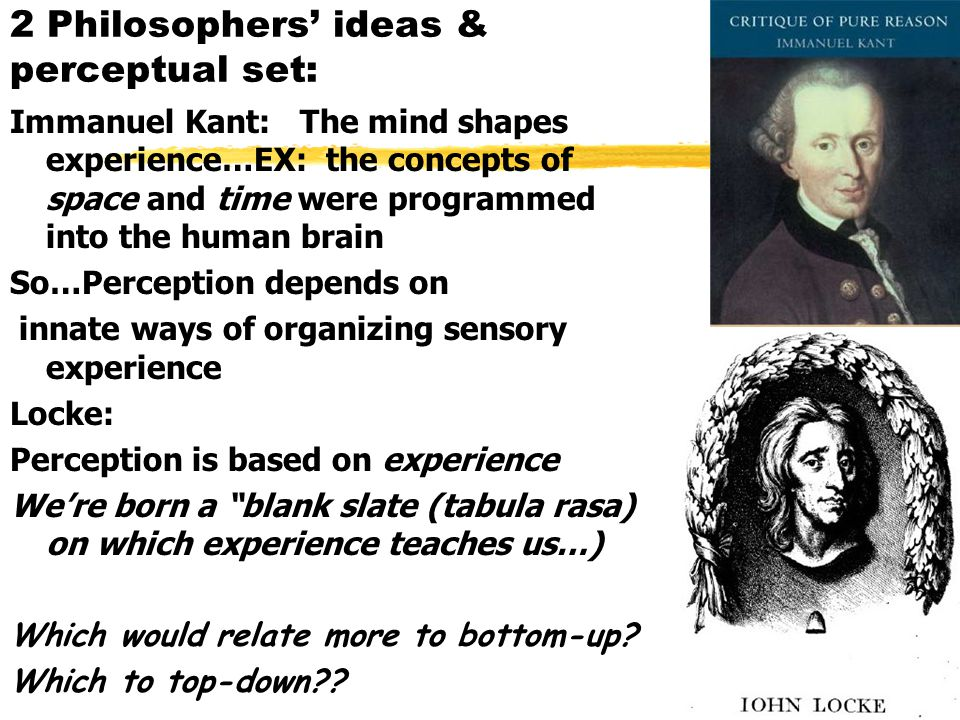 2 Philosophers' ideas & perceptual set: Immanuel Kant: The mind shapes experience…EX: the concepts of space and time were programmed into the human brain So…Perception depends on innate ways of organizing sensory experience Locke: Perception is based on experience We're born a blank slate (tabula rasa) on which experience teaches us…) Which would relate more to bottom-up.