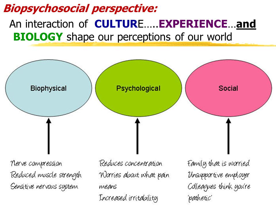 Biopsychosocial perspective: An interaction of CULTURE…..EXPERIENCE…and BIOLOGY shape our perceptions of our world 68