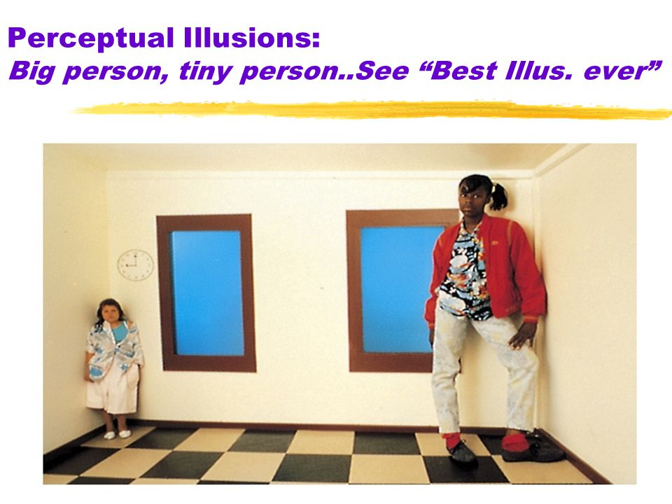 7 Perceptual Illusions: Big person, tiny person..See Best Illus. ever