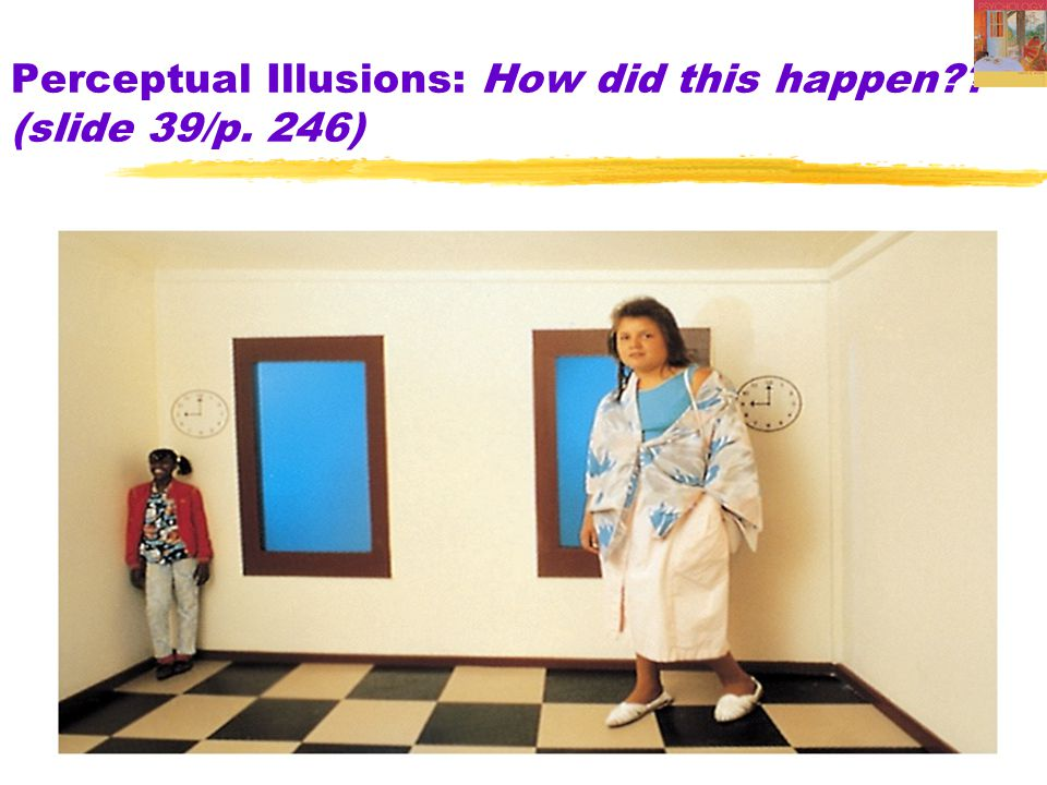 9 Perceptual Organization: Size-Distance Relationship (slide 5/6) Trapezoidal Room Illusion