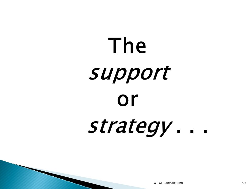 80 The support or strategy... WIDA Consortium