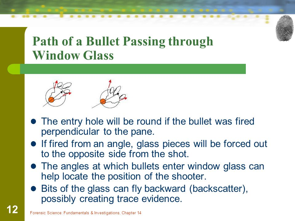 Forensic Science: Fundamentals & Investigations, Chapter 14 12 Path of a Bullet Passing through Window Glass The entry hole will be round if the bulle