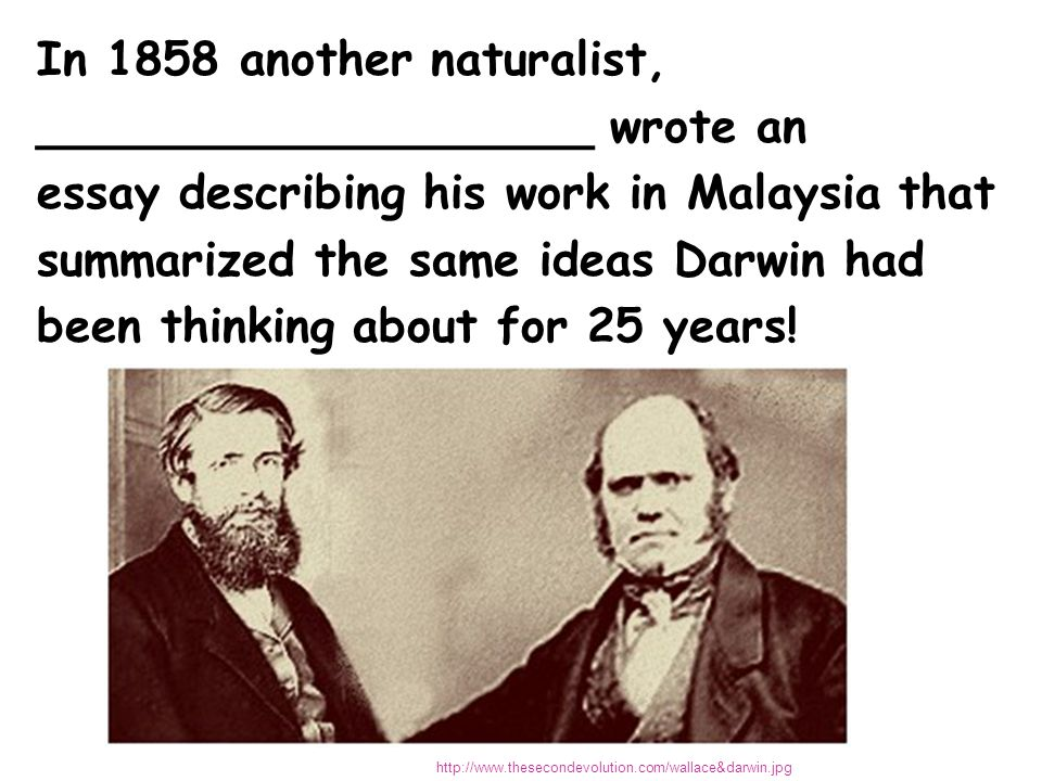 Suddenly Darwin had incentive to publish the results of his work.