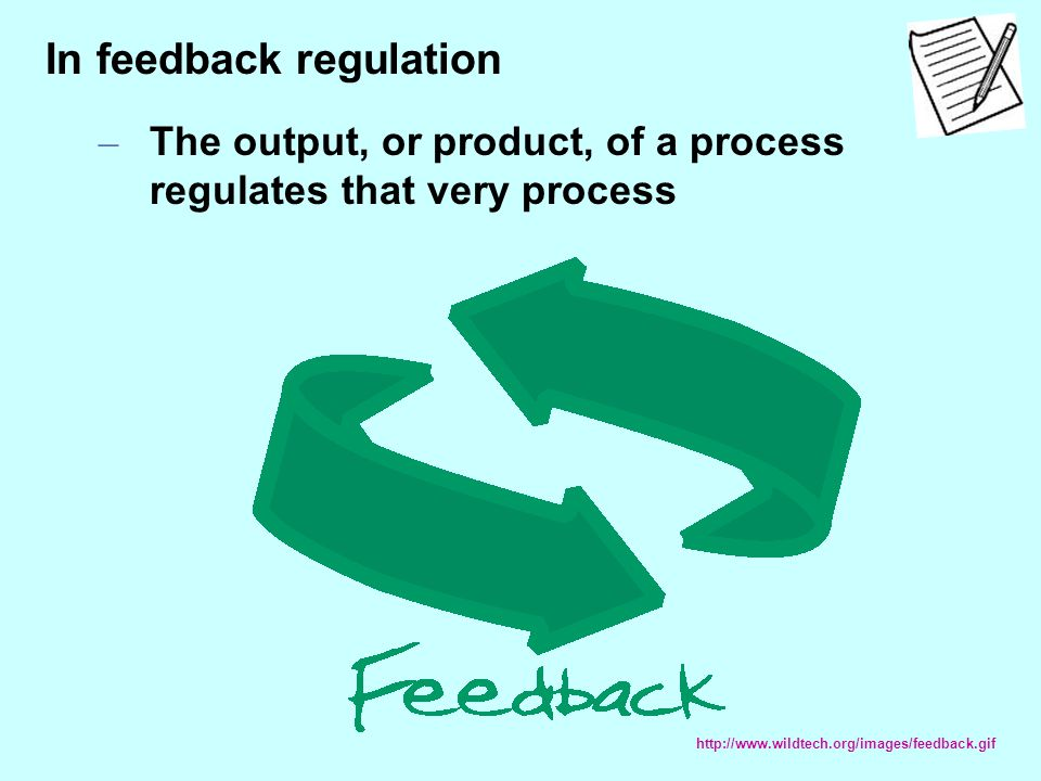 In feedback regulation – The output, or product, of a process regulates that very process http://www.wildtech.org/images/feedback.gif
