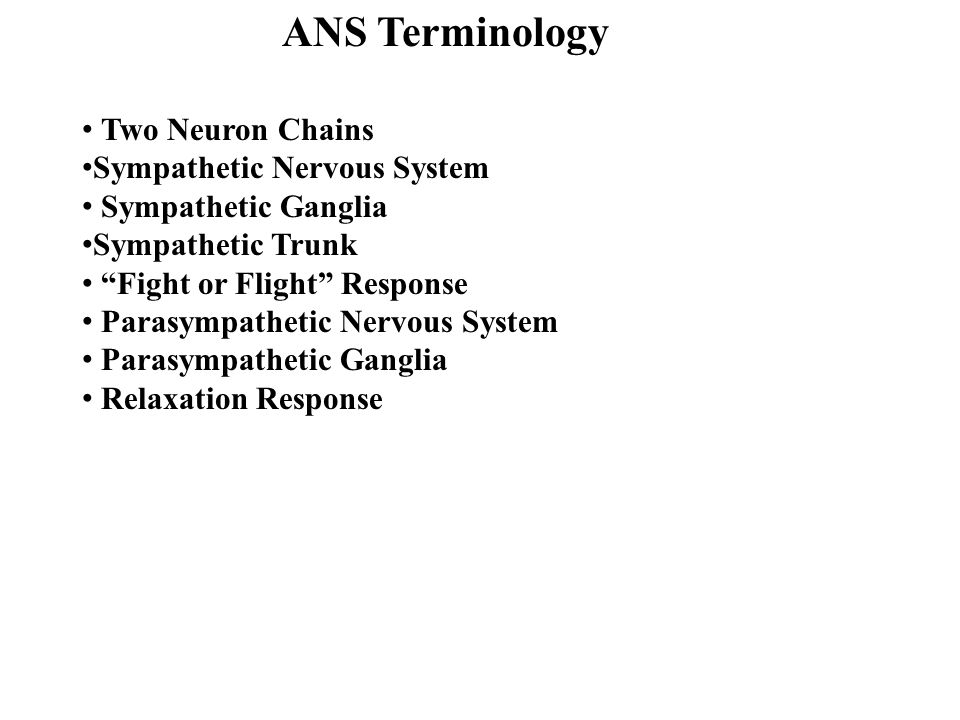 "ANS Terminology Two Neuron Chains Sympathetic Nervous System Sympathetic Ganglia Sympathetic Trunk ""Fight or Flight"" Response Parasympathetic Nervous"