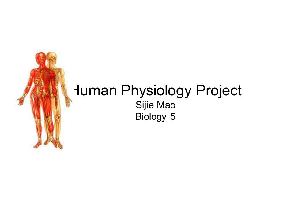 Human Physiology Project Sijie Mao Biology 5
