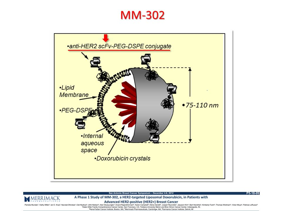 MM-302