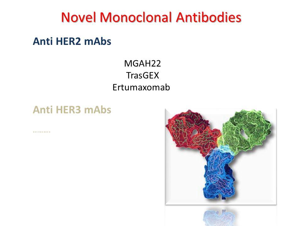 Anti HER2 mAbs MGAH22 TrasGEX Ertumaxomab Anti HER3 mAbs ………. Novel Monoclonal Antibodies