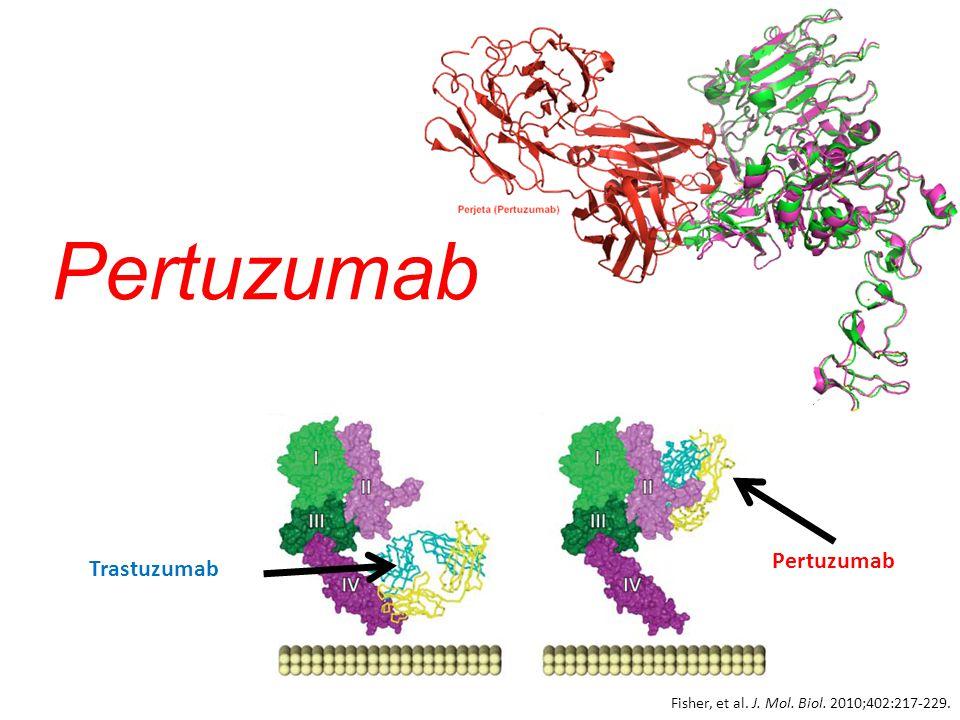 Pertuzumab Trastuzumab Pertuzumab Fisher, et al. J. Mol. Biol. 2010;402:217-229.