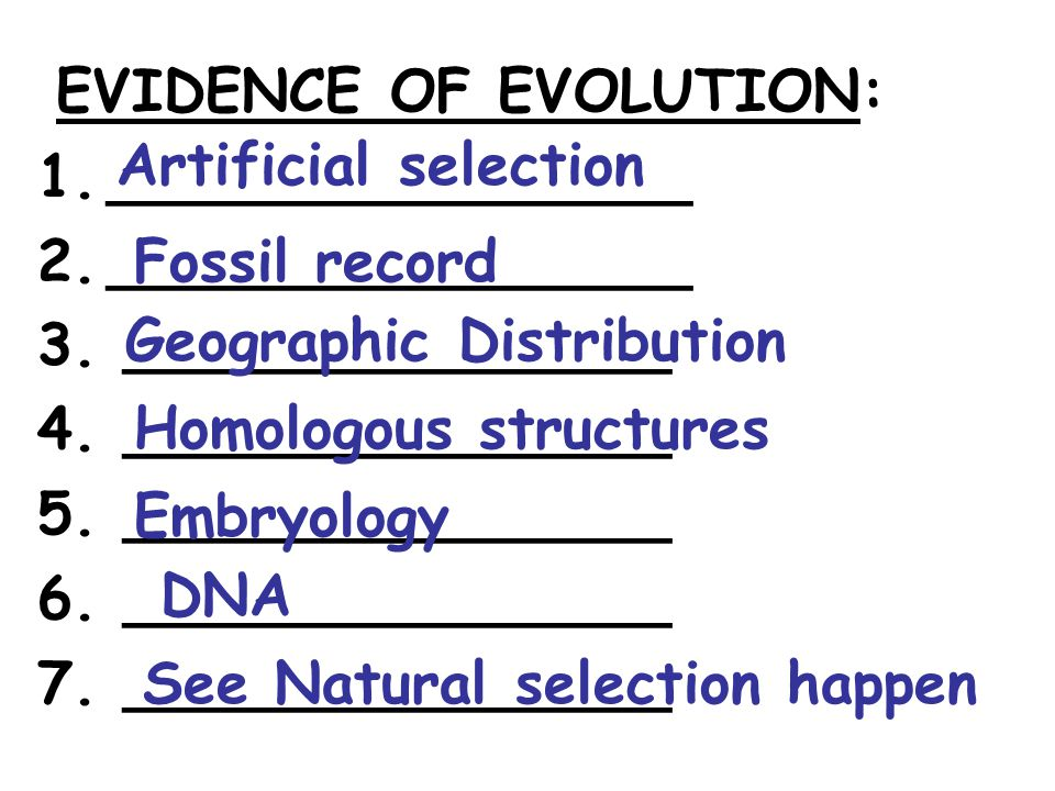 A theory is a ____________, _______, explanation of phenomena that have occurred in the natural world, like the theory of __________________, ________, and _____________.