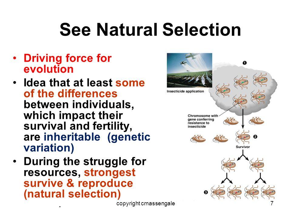Darwins idea from Malthus ……..