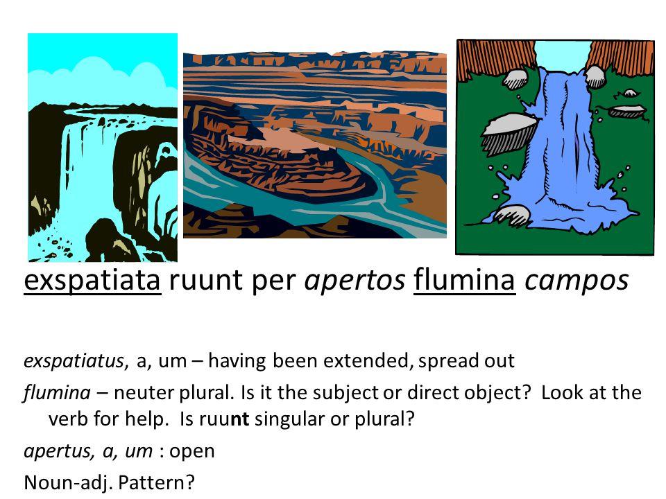 exspatiata ruunt per apertos flumina campos exspatiatus, a, um – having been extended, spread out flumina – neuter plural.