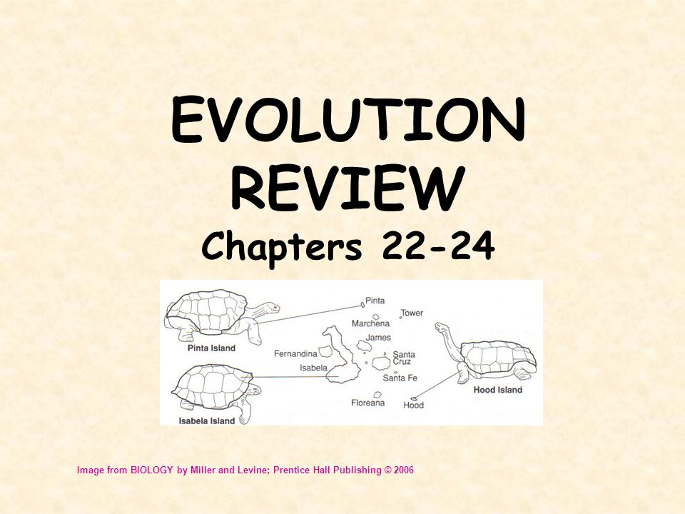 EVOLUTION REVIEW Chapters 22-24 Image from BIOLOGY by Miller and Levine; Prentice Hall Publishing © 2006