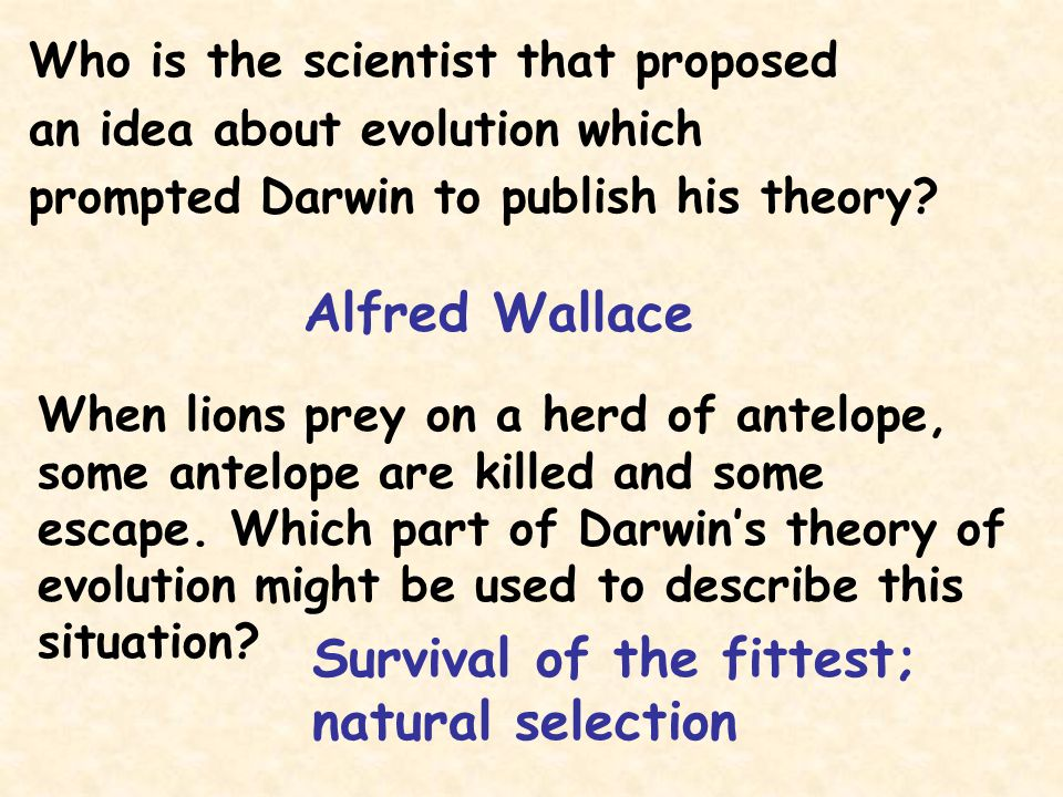 Who is the scientist that proposed an idea about evolution which prompted Darwin to publish his theory? Alfred Wallace When lions prey on a herd of an