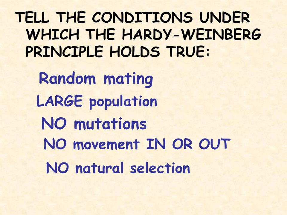 TELL THE CONDITIONS UNDER WHICH THE HARDY-WEINBERG PRINCIPLE HOLDS TRUE: Random mating NO mutations LARGE population NO movement IN OR OUT NO natural