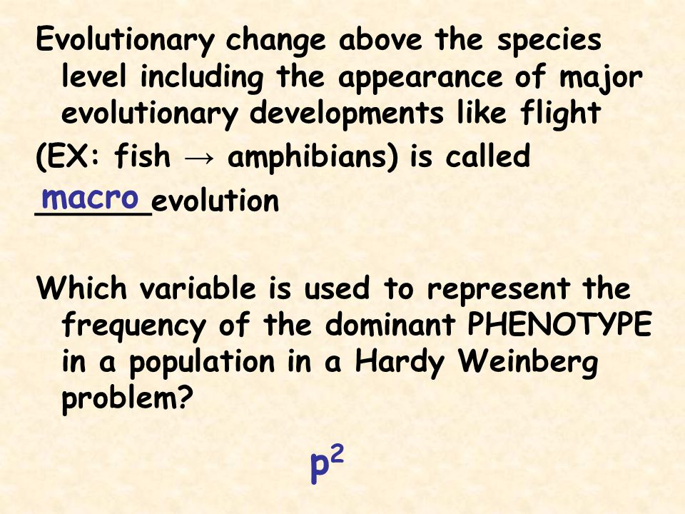 Evolutionary change above the species level including the appearance of major evolutionary developments like flight (EX: fish → amphibians) is called