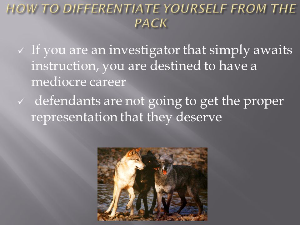 If you are an investigator that simply awaits instruction, you are destined to have a mediocre career defendants are not going to get the proper representation that they deserve