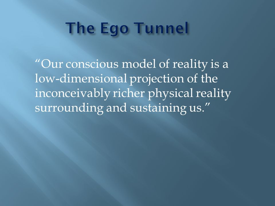 """Our conscious model of reality is a low-dimensional projection of the inconceivably richer physical reality surrounding and sustaining us."""