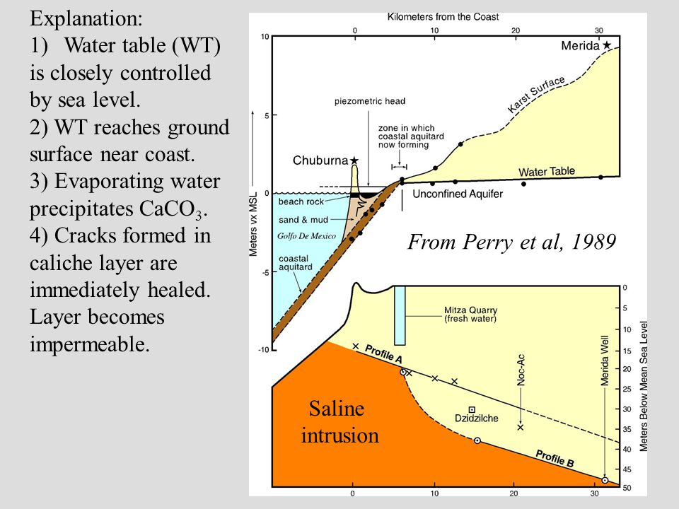 Explanation: 1)Water table (WT) is closely controlled by sea level.