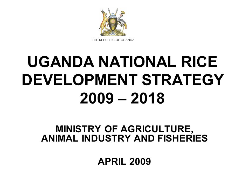 UGANDA NATIONAL RICE DEVELOPMENT STRATEGY 2009 – 2018 MINISTRY OF AGRICULTURE, ANIMAL INDUSTRY AND FISHERIES APRIL 2009 THE REPUBLIC OF UGANDA