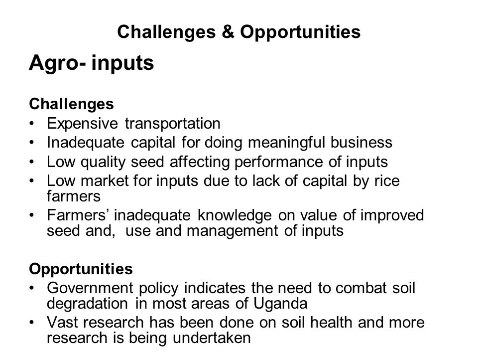 Challenges & Opportunities Agro- inputs Challenges Expensive transportation Inadequate capital for doing meaningful business Low quality seed affecting performance of inputs Low market for inputs due to lack of capital by rice farmers Farmers' inadequate knowledge on value of improved seed and, use and management of inputs Opportunities Government policy indicates the need to combat soil degradation in most areas of Uganda Vast research has been done on soil health and more research is being undertaken