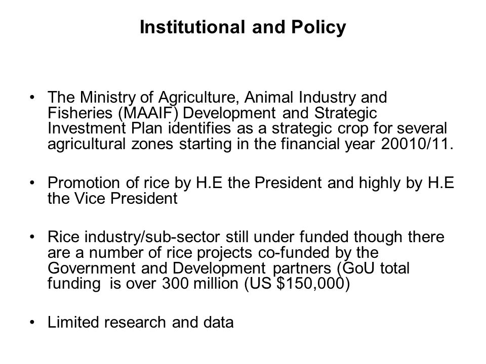 Institutional and Policy The Ministry of Agriculture, Animal Industry and Fisheries (MAAIF) Development and Strategic Investment Plan identifies as a strategic crop for several agricultural zones starting in the financial year 20010/11.