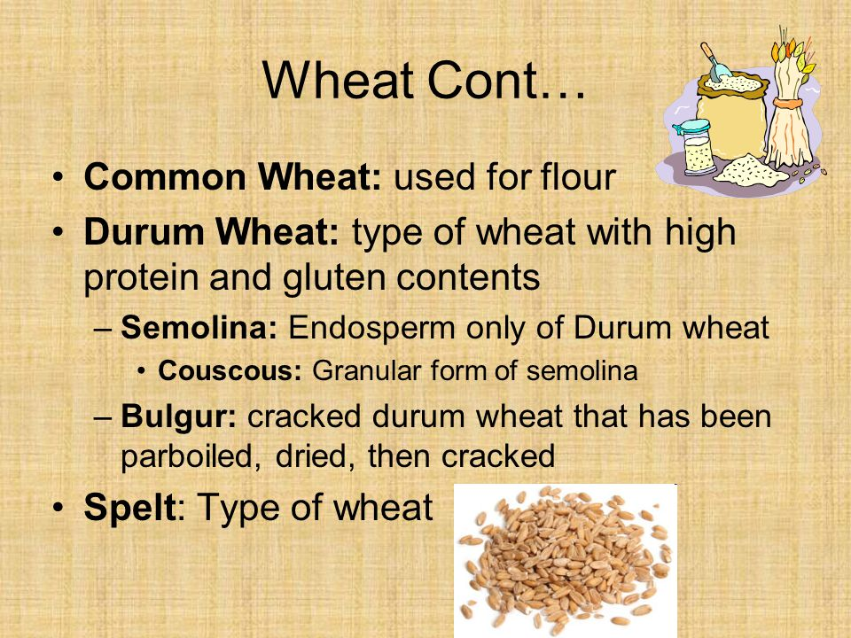 Wheat Cont… Common Wheat: used for flour Durum Wheat: type of wheat with high protein and gluten contents –Semolina: Endosperm only of Durum wheat Couscous: Granular form of semolina –Bulgur: cracked durum wheat that has been parboiled, dried, then cracked Spelt: Type of wheat