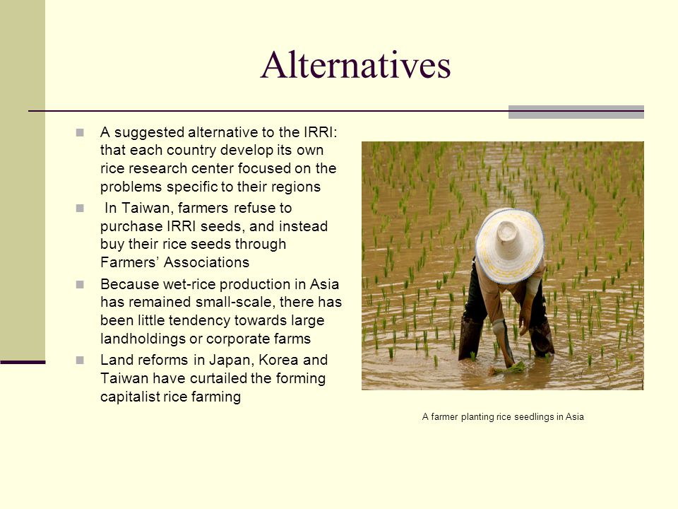 Alternatives A suggested alternative to the IRRI: that each country develop its own rice research center focused on the problems specific to their reg