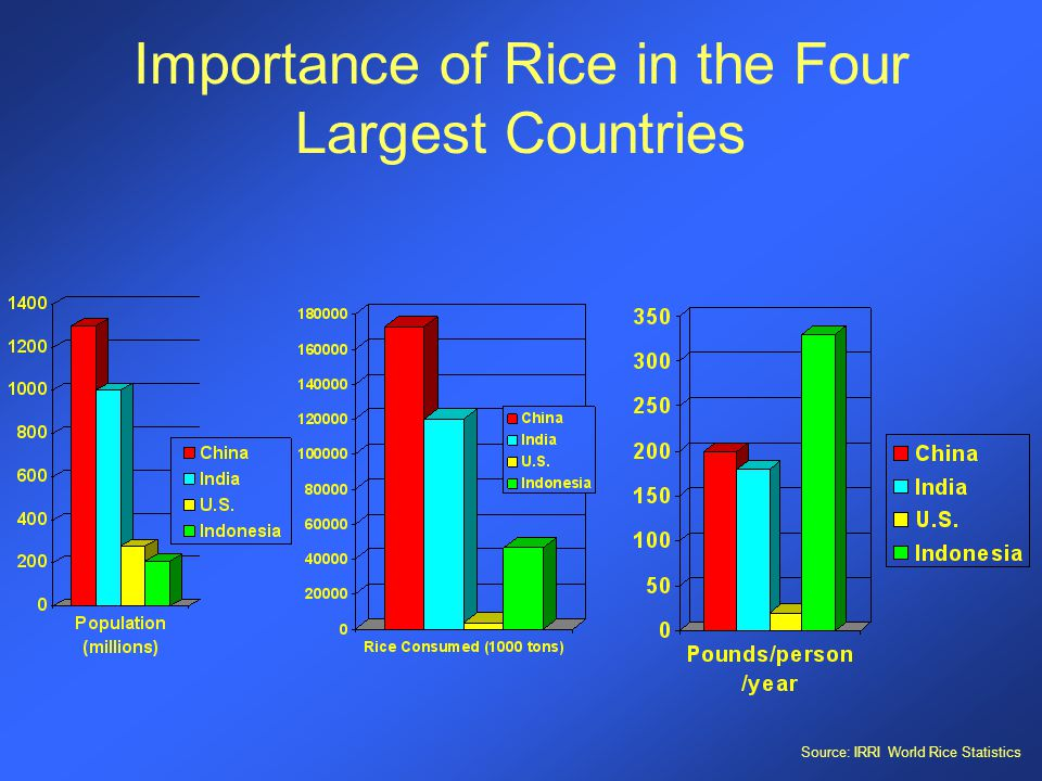 Importance of Rice in the Four Largest Countries Source: IRRI World Rice Statistics