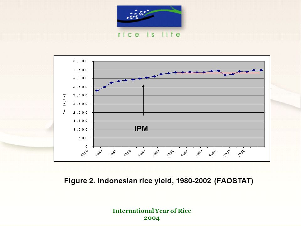 International Year of Rice 2004 Figure 2. Indonesian rice yield, 1980-2002 (FAOSTAT) IPM