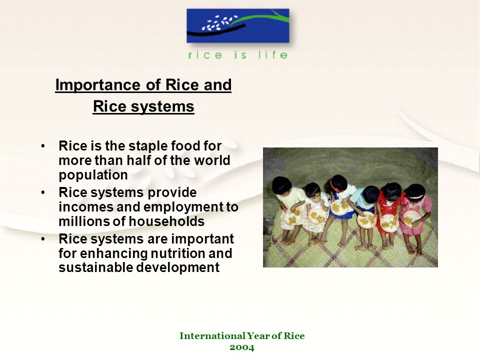 International Year of Rice 2004 Importance of Rice and Rice systems Rice is the staple food for more than half of the world population Rice systems provide incomes and employment to millions of households Rice systems are important for enhancing nutrition and sustainable development