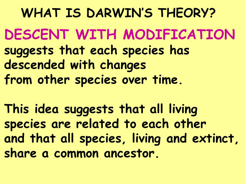 DESCENT WITH MODIFICATION suggests that each species has descended with changes from other species over time. This idea suggests that all living speci