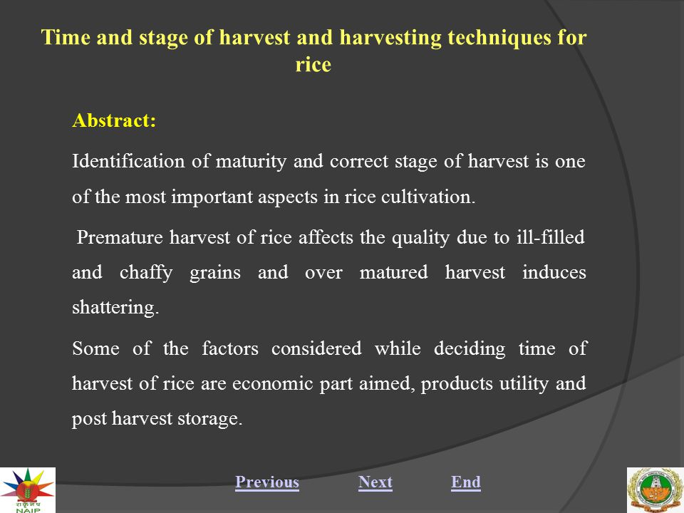 Time and stage of harvest and harvesting techniques for rice Manual and mechanical methods of harvesting are the two methods of harvesting of rice crop, decided depending upon the purpose, time and labour availability.