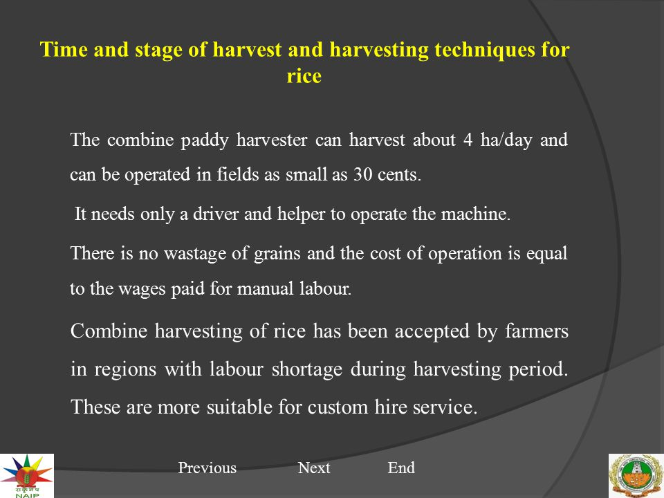 Time and stage of harvest and harvesting techniques for rice The combine paddy harvester can harvest about 4 ha/day and can be operated in fields as s