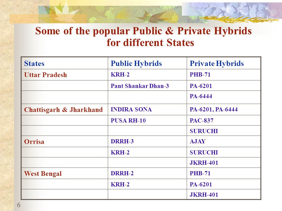 6 StatesPublic HybridsPrivate Hybrids Uttar Pradesh KRH-2PHB-71 Pant Shankar Dhan-3PA-6201 PA-6444 Chattisgarh & Jharkhand INDIRA SONAPA-6201, PA-6444 PUSA RH-10PAC-837 SURUCHI Orrisa DRRH-3AJAY KRH-2SURUCHI JKRH-401 West Bengal DRRH-2PHB-71 KRH-2PA-6201 JKRH-401 Some of the popular Public & Private Hybrids for different States