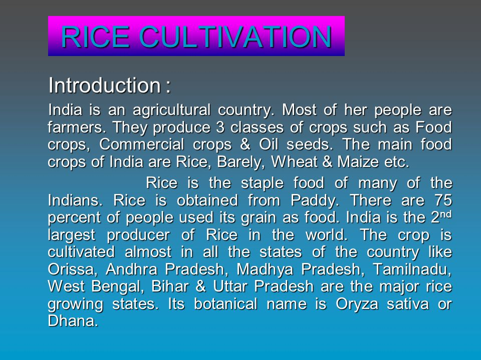 RICE CULTIVATION Introduction : India is an agricultural country. Most of her people are farmers. They produce 3 classes of crops such as Food crops,